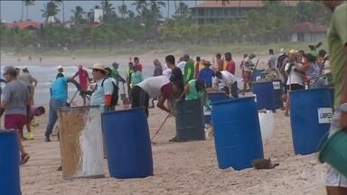 Voluntários fazem mutirão para limpar óleo de praias no litoral de Pernambuco - De acordo com o último boletim do Ibama, as manchas de óleo já atingiram 194 pontos do Nordeste.