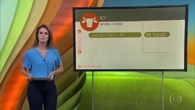 Veja o preço do café e a cotação do boi - A saca do arábica foi vendida a R$ 400 na última sexta-feira, em Jaú-SP. A arroba do boi gordo foi negociada a R$ 163 em José Bonifácio-SP.