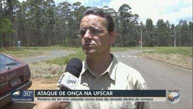 Porteiro diz ter sido atacado por onça na UFSCar em São Carlos - Homem de 38 anos foi socorrido à Santa Casa onde permanece internado e será encaminhado para cirurgia.