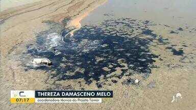 Manchas aparecem em praia de Acaraú - Saiba mais em g1.com.br/ce