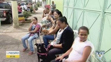 São Vicente conta com novo serviço de castramóvel - Unidade itinerante realiza castração gratuita de cães e gatos.