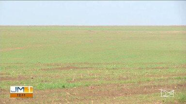 Excesso de chuva atrapalha plantio de soja no sul do Maranhão - Chuva que chegou para valer ao sul do Maranhão ajuda os agricultores que estão iniciando o plantio da safra de soja, mas quando chove demais, o trabalho acaba sendo adiado.
