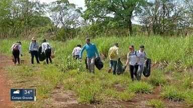 Voluntários retiraram lixo nas proximidades do córrego Ceroula - Eles também orientaram visitantes sobre o descarte correto.