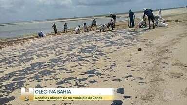 Manchas atingem rio no município do Conde, na Bahia - Na cidade de Conde, na Bahia, o óleo já atingiu até o mangue, lugar importante para a vida marinha.