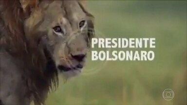 Bolsonaro pede desculpas por vídeo publicado na conta dele nas redes sociais - No vídeo, Bolsonaro é representado por um leão cercado por hienas, que representam veículos de impressa, partidos políticos, o STF e outros. Ministro Celso de Mello criticou a divulgação.
