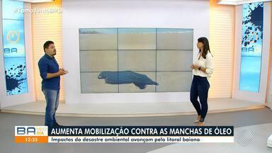 Pesquisador da Ufba fala sobre impactos do avanço das manchas de óleo no litoral baiano - O biólogo Moreira Ícaro comenta o risco do óleo chegar no Arquipélago de Abrolhos.