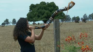 Orquestra muda vida de filhos de pequenos produtores rurais - O berrante, entre os outros instrumentos musicais, tem atraído o interesse pela música sertaneja