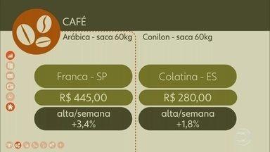 Veja o preço da saca do café esta semana - A saca do café arábica, em Franca (SP), foi negociada na sexta-feira (1º) por R$445, uma alta de 3,4% na semana. O conilon, em Colatina (ES), saiu por R$280, uma alta de 1,8%.