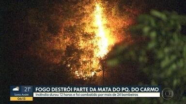 Incêndio de grandes proporções destrói parte do Parque Natural Fazenda do Carmo - Parque que fica na Zona Leste da cidade foi atingido pelo fogo neste domingo (3).