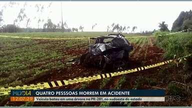 Quatro pessoas morreram em acidente na PR-281 no sudoeste do estado - O motorista perdeu o controle da direção e bateu em uma árvore.