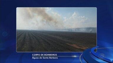 Bombeiros tentam controlar incêndio em matagal em Águas de Santa Bárbara - Os bombeiros tentaram controlar um incêndio em um matagal de Águas de Santa Bárbara (SP).