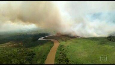 Pantanal completa 10 dias de incêndios devastadores - O fogo destruiu uma área maior que a cidade do Rio de Janeiro e continua avançando.