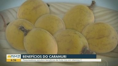 Pesquisadores estudam os benefícios da fruta caramuri - Fruta é rica em vitamina C.