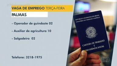 Confira as vagas de emprego disponíveis em Palmas, Porto Nacional e Araguaína - Confira as vagas de emprego disponíveis em Palmas, Porto Nacional e Araguaína