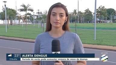 Alerta para o aumento de casos de dengue no período de verão - Alerta para o aumento de casos de dengue no período de verão