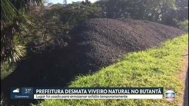 Prefeitura desmata viveiro natural no Butantã - Espaço foi usado para armazenar asfalto temporariamente.