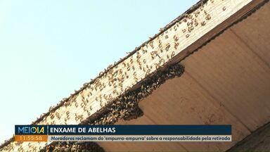 Moradora do Periollo quer saber de quem é a responsabilidade para retirada de abelhas - Defesa Civil ficará responsável pela contratação de apicultores.
