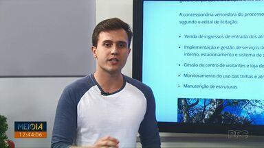 Vila Velha terá tirolesa, arvorismo e campo de desafios - Eco Parques do Brasil foi declarada vencedora do processo licitatório pelo Instituto Ambiental do Paraná (IAP).