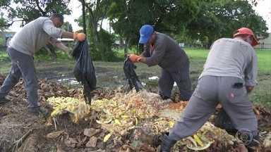 Destino e tratamento do lixo é tema da Conferência Brasileira de Mudança do Clima - Evento é realizado no Recife.