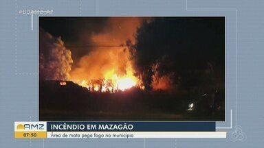 Fogo atinge área florestal próximo de escola em Mazagão, no Amapá - Caso aconteceu na quinta-feira (7).