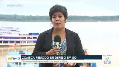 Hoje começa o período de defeso em Rondônia - Nove espécies de peixes estão com pesca proibida.