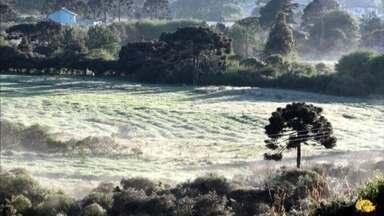Geada na Serra Catarinense - Em Urupema a paisagem amanheceu coberta de branco.