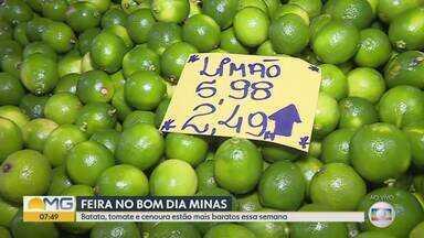 Bom Dia Minas - Edição de quinta-feira, 21/11/2019 - Bom Dia Minas - Edição de quinta-feira, 21/11/2019
