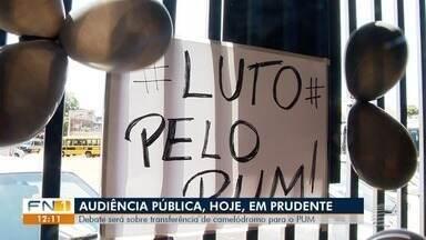 Audiência pública discute uso do PUM durante reforma do Camelódromo - Reunião será na Câmara de Presidente Prudente.