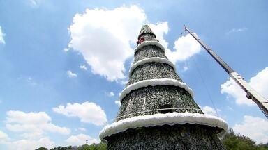 Árvore de Natal do Ibirapuera passa pelos reparos finais antes da inauguração - Com muita luz, famílias de empenham na decoração natalina. Artesãos aproveitam as festas de fim de ano para fazer renda extra.