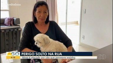 Aposentada é atacada por cachorro sem coleira em parque de Goiânia: 'Não esqueço' - Eva dos Santos, de 66 anos, levou uma mordida na perna enquanto tentava socorrer seu cão do ataque. Filha da idosa diz que mãe deixou de fazer atividades por causa do machucado.