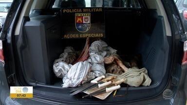 Homens são presos por furto de gado em Presidente Prudente - Caso foi registrado na Delegacia Participativa da Polícia Civil.