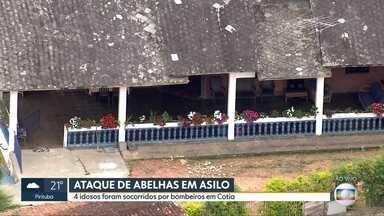 Ataque de abelhas em asilo de Cotia - 4 idosos precisaram ser socorridos pelo Corpo de Bombeiros