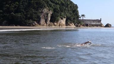 Desafio Por do Sol testa limites de nadadores em 13 horas ao redor da Ilha do Mel - Desafio Por do Sol testa limites de nadadores em 13 horas ao redor da Ilha do Mel