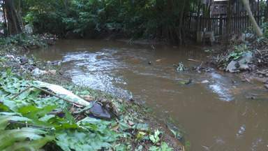 Operação Inverno faz mutirão de limpeza em cinco igarapés de Rio Branco - Operação Inverno faz mutirão de limpeza em cinco igarapés de Rio Branco