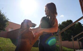 Guia de adoção: dicas para levar um companheiro animal para casa - Em Curitiba, diversos cães e gatos esperam por um novo lar. Saiba como adotar seu novo melhor amigo