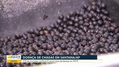CVS confirma 9 casos da doença de Chagas em Santana, no Amapá - Inseto contaminado deposita fezes nos caroços de açaí.