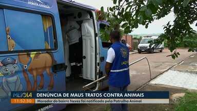 Patrulha Animal notifica morador por maus-tratos contra cachorros em Ponta Grossa - Cachorro foi encontrado morto no bairro Neves; também havia outros vivos, mas em situação precária de higiene.