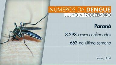 Chegada do verão intensifica o combate à dengue no Paraná - De Julho à Dezembro, mais de 3 mil casos foram registrados no estado.
