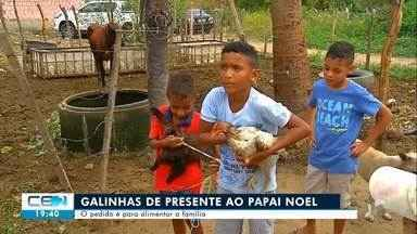 Dois meninos pedem galinha de presente de Natal para comer ovo todo dia - Confira mais notícias em g1.globo.com/ce