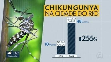 A cada 13 minutos uma pessoa é infectada com Chikungunya na cidade - Mais de 38 mil casos foram registrados em 2019