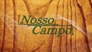 Confira o 1º bloco do Nosso Campo deste domingo (12) - Confira o 1º bloco do Nosso Campo deste domingo (12).