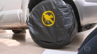 Como evitar que cachorros façam xixi na roda do carro - Como evitar que cachorros façam xixi na roda do carro