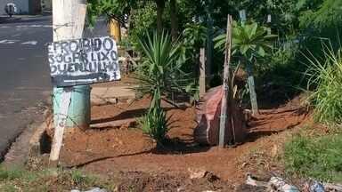 Prefeitura de Rio Preto tem gastos de mais de R$11 milhões com limpeza em terrenos público - A Prefeitura de São José do Rio Preto (SP) tem gastos que somam mais de R$11 milhões por ano com a limpeza em terrenos públicos da cidade.