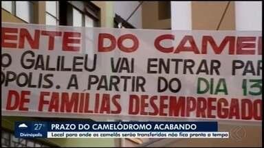 Ambulantes têm até domingo para desocuparem a Rua São Paulo em Divinópolis - Vendedores pedem prazo para Prefeitura, pois novo local de trabalho ainda não está pronto. O Executivo falou sobre o assunto.
