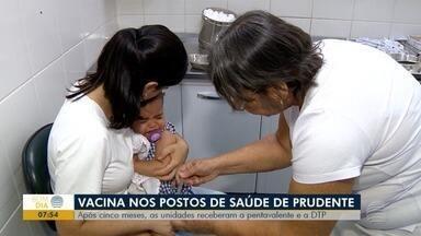 Vacinas pentavalente e DTP chegam às unidades de Saúde de Presidente Prudente - Postos ficaram cerca de cinco meses sem receber os medicamentos.
