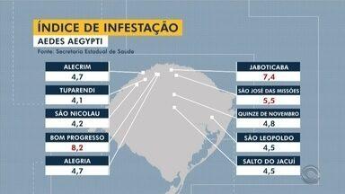 Cidades da Região Norte estão em situação de alerta para a dengue - Passo Fundo é um dos municípios considerados infestados pelo mosquito transmissor da doença.