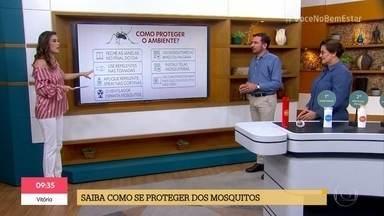 Conheça as estratégias para afastar os mosquitos nesse verão - O 'Bem Estar no É de Casa' ensina qual repelente usar