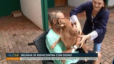 Cachorrinha Belinha reencontra o dono, em Campo Mourão - Ela não saiu da frente do hospital enquanto o dono dela era atendido.