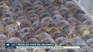 Festa de Figo de Valinhos chega a 71° edição e espera 150 mil turistas em 13 dias - Evento oferece diversidade de frutas aos visitantes e acontece até o dia 2 de fevereiro, no Parque Municipal de Feiras e Exposições.