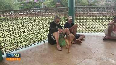 Belinha reencontra dono - Seu Joaquim ficou internado e teve que se afastar da cachorrinha.